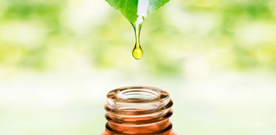 Kosmetikprodukte mit natürlichen Pflanzenölen